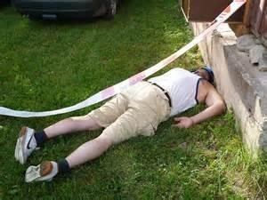 Drunk-on-the-lawn.jpeg